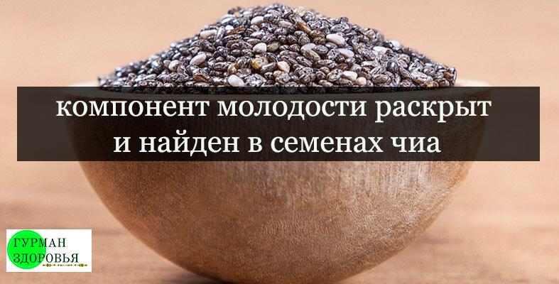 ложка семян чиа источник молодости и здоровья