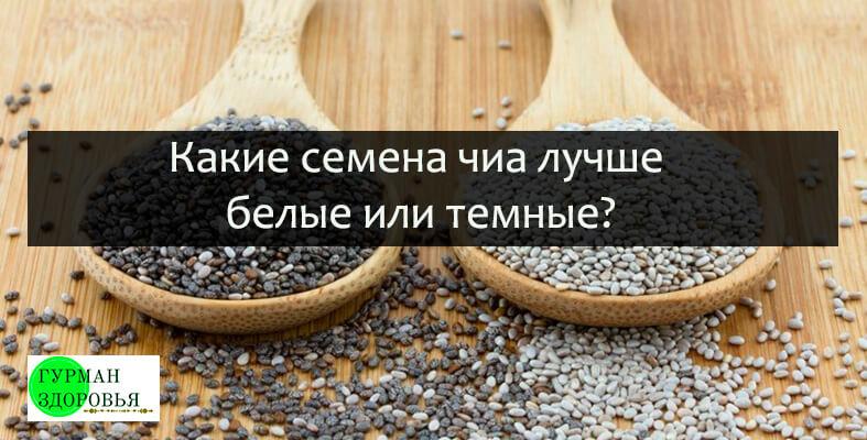 какие семена чиа лучше выбрать светлые или темные