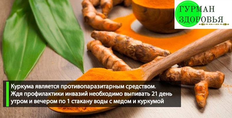 Куркума купить в украине