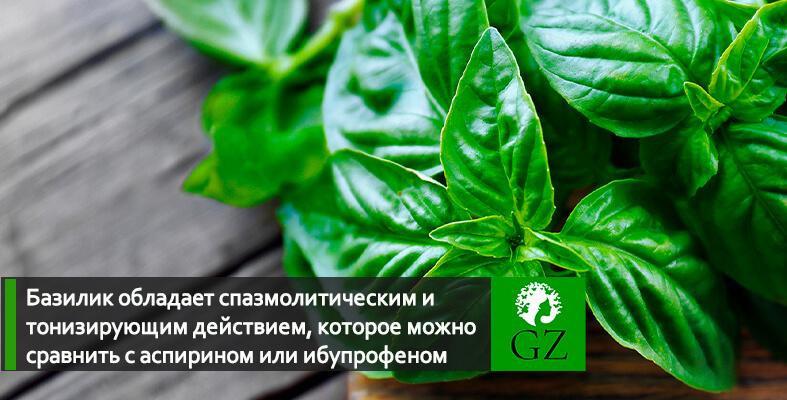 Базилик сушеный купить Украина