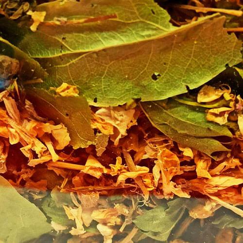 Зеленый чай омолаживает