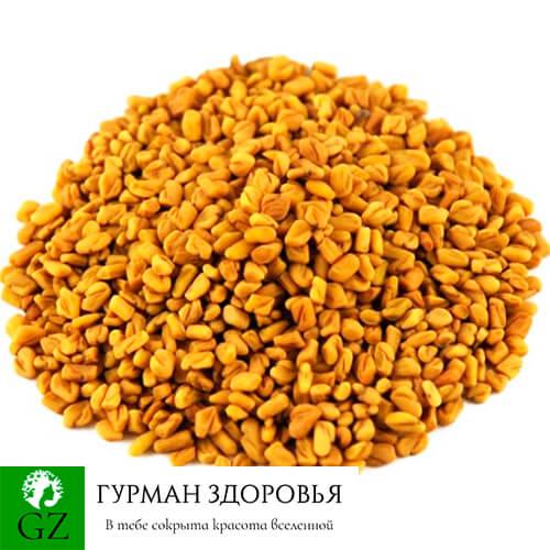 Пажитник сенной купить Украина