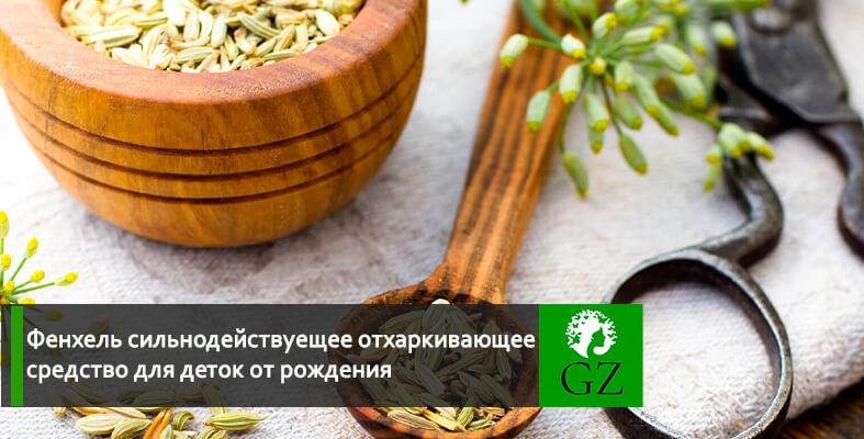 Семена фенхеля фото