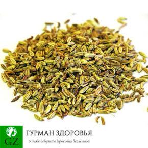 Семена фенхеля свойства