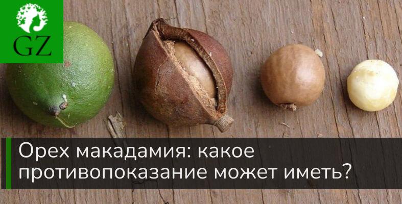 Орех макадамия какое противопоказание