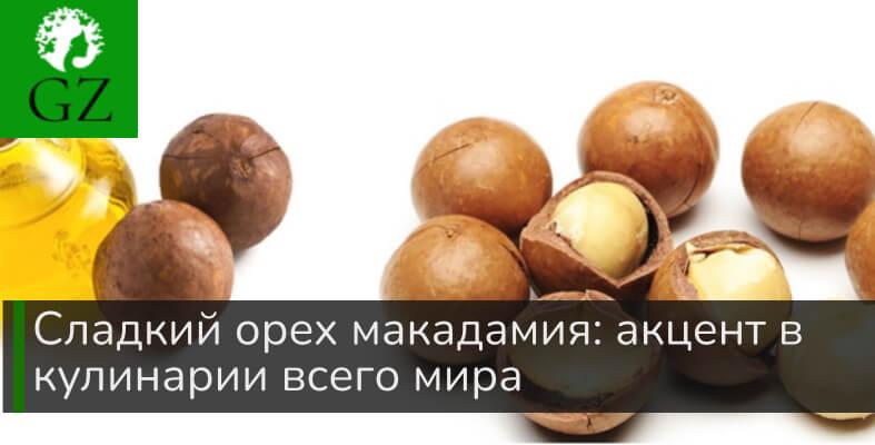 Орех макадамия: какое применение в кулинарии.